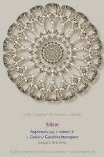10-Silber-18er