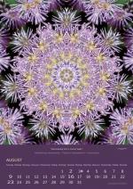 08-imagami-Kalender-2020